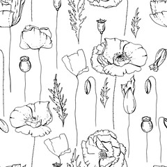 Seamless pattern with poppies.  Black and white. Endless texture for floral design