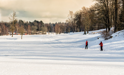 Exercise on skis in nature just outside Stockholm, Sweden, a snowy winter day