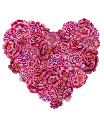 Valentines Day Heart Made of red roses and pink peonies flowers painting Isolated on White Background pattern.