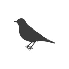 Bird Icon. Flat isolated vector illustration in black on white background