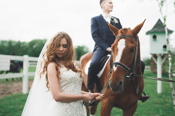 Newly married wedding couple stand with beautiful horse on nature