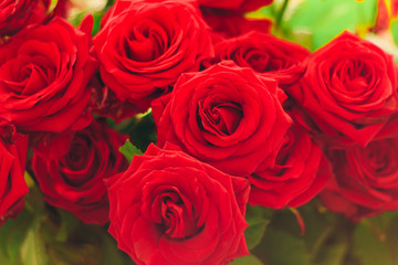 closeup red roses bouquet
