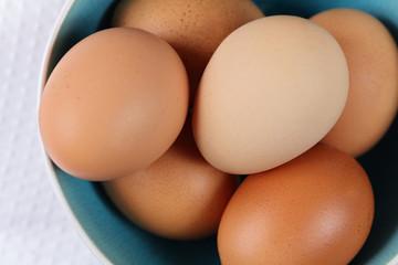 Farm Fresh Chicken Eggs. Healthy eating concept