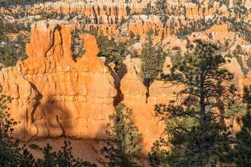 Bryce Canyon Scenic Winter Landscape