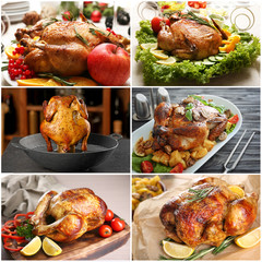 Set with different whole roasted chickens