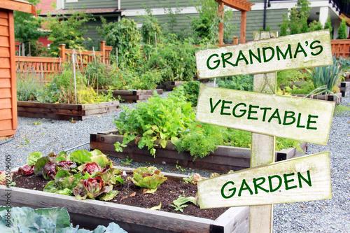 Grandmau0027s Vegetable Garden