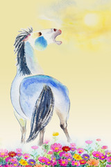 Watercolor paintings colorful of One white horse