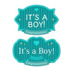 Babyborn boy badge or label.