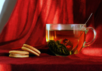 Glass cup of green tea with cookies on red background
