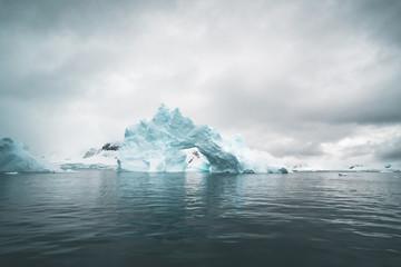 Panorama of Icebergs - Antarctica