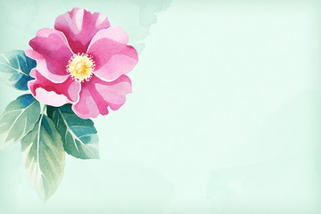 Background with a watercolor wild rose flower. Perfect for greeting cards or invitations