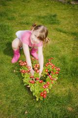 un coeur de fleurs pour maman