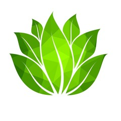 Green leaves logo, vector