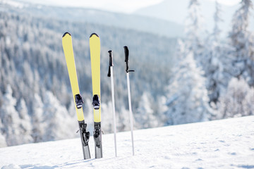 Skis with sticks on the snowy mountains with frozen forest on the background Wall mural