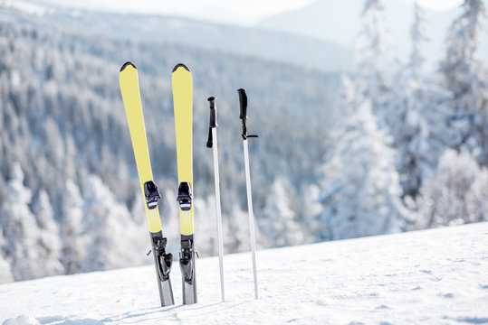 Skis with sticks on the snowy mountains with frozen forest on the background