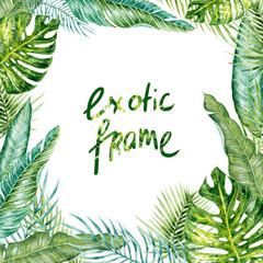 Watercolor hand-drawn exotic (tropical) leaves frame on the white background