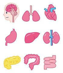 内臓のアイコンイラスト素材セット