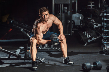 athletic man bodybuilder execute exercise with dumbbells for biceps sitting in dark gym looking at camera
