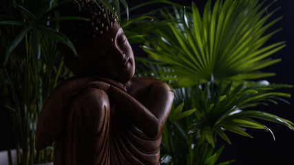 wooden buddha and light from side with blurred plants