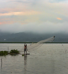 Fisherman spreading the web view in early morning. Location JOMBOR water dam, Central Java, Klaten, Yogyakarta