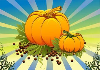 still life of pumpkins on the vine leaves in vector