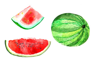 Fruit watercolor. Watermelon and slices of watermelon