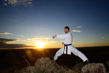 Garden Poster Martial arts Specialist in martial arts making technical movements.