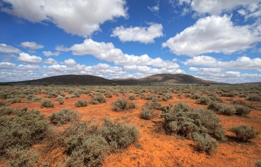 South Australia – Outback desert with scrubs and hills under cloudy sky as panorama
