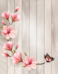 Nature spring background with beautiful magnolia branches on wooden sign. Vector.