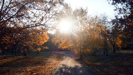 A road 