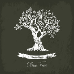 Natural oil tree logo for olive grove.