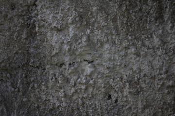 texture muro