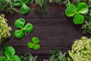 Shamrocks with Mixed Foliage on Dark Table