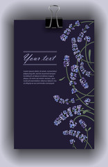 vector template color drawn design with lavender plants
