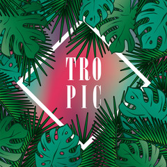 Stylish background with palm leaves. Beautiful concept design of a tropical poster, banner, cover or postcard. Vector illustration. Eps 10. Summer.