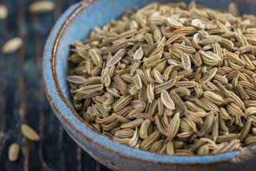 Fennel Seeds in a Blue Pottery Bowl