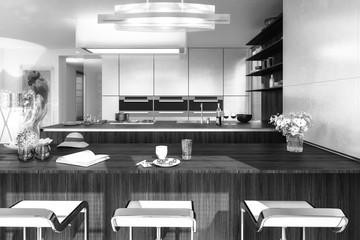 Modern Kitchen Arrangement (B&W)
