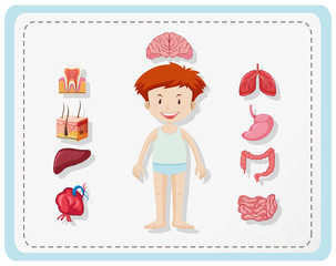 Boy and different parts of body