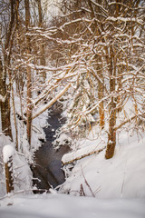 Photo of snowy landscape and river