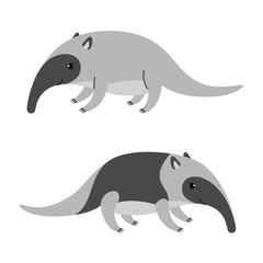 Cute cartoon anteater isolated on white background.