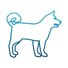 Wolf animal silhouette icon vector illustration graphic design