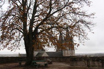 Tree French landscape castle chateaux