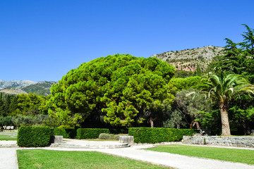 The path in the garden, green lawns with paths, the design of the landscaped garden
