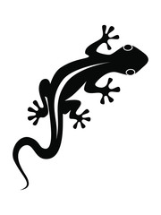 Lizard graphic icon. Lizard black sign isolated on white background. Vector illustration