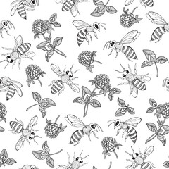 Clover and bees on white background. Silhouettes. Seamless  pattern. Hand-drawn vector illustration. Nature abstract background.