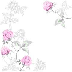 Floral  background with clover and place for text. Vector illustration on a white background. Invitation, greeting card or an element for your design.
