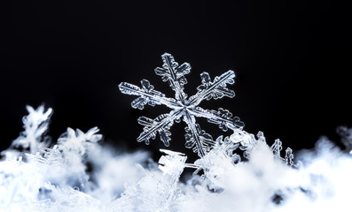 photo real snowflakes during a snowfall, under natural conditions at low temperature