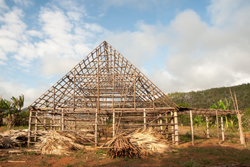 Frame of a drying house for tobacco leaves in the valley of Vinales on Cuba.