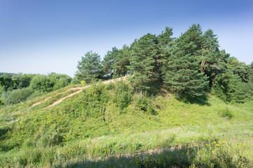 Summer landscape in moscow region. Russia. Zvenigorod