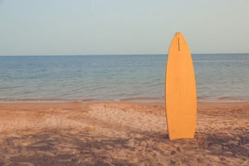 Yellow surf board pinned in sandy beach and bucket  in front of sea bay
